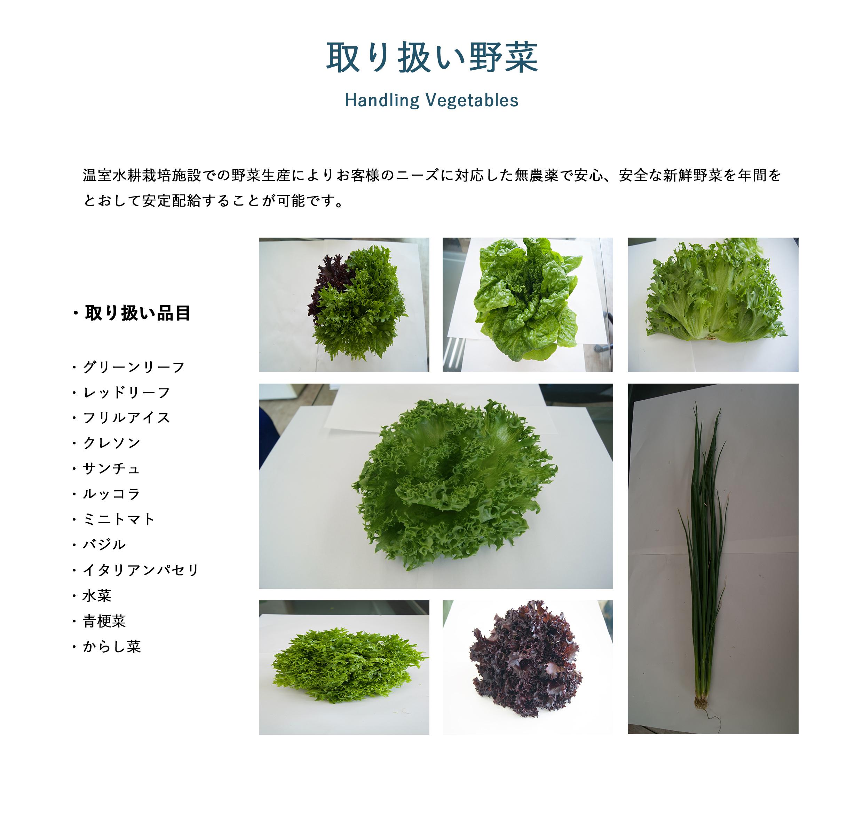 取り扱い野菜